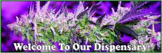 What to enjoy the benefits of medical marijuana from a legitimate service provider! Choose a reputed nearest marijuana dispensary to buy cannabis of assured quality.