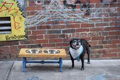 Dog Feeder, Dog Furniture, Raise Dog Feeder, Industrial Chic, Dog Bowl Stand, Dog Feeding, Elevated Dog Bowl, Industrial, Pet Furniture, Dog by CleverRavenDogCo on Etsy https://www.etsy.com/listing/531251937/dog-feeder-dog-furniture-raise-dog