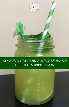 mint drink Stay balanced and hydrated this summer with a Cucumber Mint Limeade! This sweet and cooling drink is a popular agua fresca served in Mexico and has a surprising tang at the end o Cucumber Limeade Recipe, Cucumber Detox Water, Cucumber Juice, Cucumber Recipes, Juice Smoothie, Smoothie Drinks, Mint Recipes, Summer Recipes, Fresco