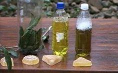 Agricultores fazem produtos de limpeza com plantas medicinais e folhas de árvores nativas