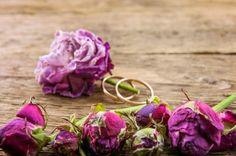 Planning a #rustic #wedding? These beautiful photos will give you the inspiration you need! #TheDiamondRingCo http://rusticweddingchic.com/elegant-horse-farm-wedding