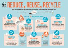 A Plastic Bag Takes Up To 1000 Years To Decompose That