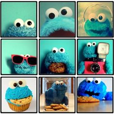 the Monster who loves cookies