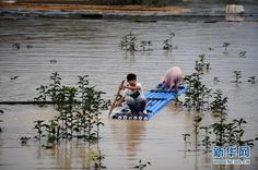 Zhejiang teenager apparently still out there with his pig