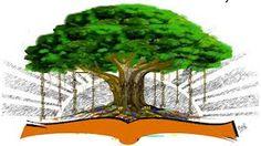 sarva sakthi virutcha peedam: நட்சத்திர பரிகாரம் Occult Science, Herbs, Blog, Herb, Blogging, Medicinal Plants