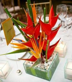 wedding centerpiece heliconia | Heliconia and Bird of Paradise Centerpiece