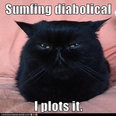 Sumfing diabolical...I plots it. And I Won't Be Telling You About It