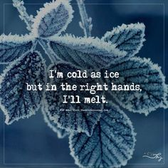 Top 15 Heart Touching Winter Quotes