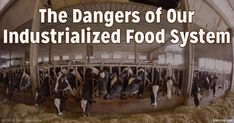 There has been an uptick in foodborne disease outbreaks, affecting a number of foods and nutritional products, including flour, sunflower seeds and multivitamins. http://articles.mercola.com/sites/articles/archive/2016/06/21/dangers-of-industrialized-food-system.aspx
