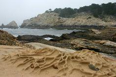 point lobos, beach rocks with Tafoni patterns