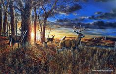 Out For The Evening by Jim Hansel, Satin Finish Art on Metal, Cabin Lodge Country home decor wall ar Wildlife Paintings, Wildlife Art, Animal Paintings, Deer Paintings, Animal Drawings, Landscape Paintings, Beautiful Paintings, Beautiful Landscapes, Hunting Art