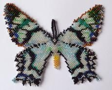 Butterfly Alcidis Agathyrus Beading Pattern by Katherina Kostinsky at Bead-Patterns.com