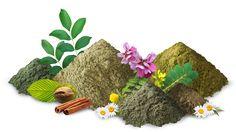 Je compose ma coloration capillaire végétale - Aroma-Zone