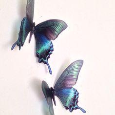 "4 Teal Blue Brown Green 5"" Tropical 3D Butterflies Mirror Home Wall Accessories"