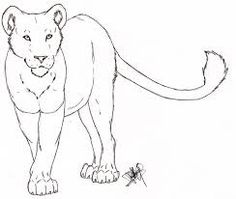 How To Draw A Lioness Easy