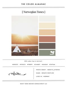 """The Color Almanac is an """"inspiration zine"""" featuring popular inspiration from the Design Seeds site. Fifty inspiration palettes are included, and HEX codes are provided for all colors. Volume IValsoincludes features on Seeds Color collaborators, including links to their work"""
