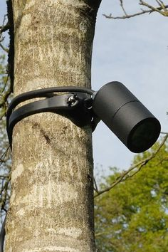 """Aluminium powder-coated strap-on tree mount spotlight, used for moonlighting and downlighting effects. Complete with adjustable knuckle joint and """"easy fit"""" mounting bracket. Outdoor Tree Lighting, Outdoor Trees, Palm Tree Lights, Pillar Lights, Street Lights, Spotlights, Shop Interior Design, Exterior Lighting, Landscape Lighting"""