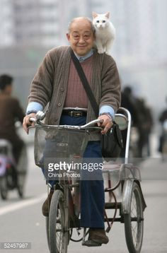 Stock Photo : Elderly Man Carrying Cat Rides Tricycle At A Street