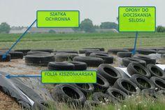 Ochrona silosu - http://wp.me/p6aAA2-f4