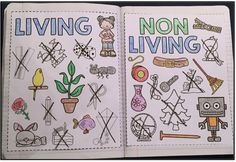 Science Interactive Notebooks: Living Things