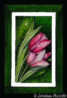 Tulips   Flickr – Condivisione di foto!