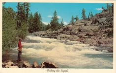 3539 Vintage Postcard 1940-60s Fishing The Rapids Pole Basket CK.188 Water Rocks | eBay