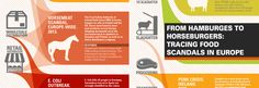 tracing-food-scandals-in-europe-horsemeat-infographic-content-scroller-feb.jpg (940×326)