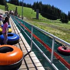 Mt Hood Ski Bowl's Adventure Park In Oregon Has Summer Tubing - Travel tips - Travel tour - travel ideas Camping Near Me, Van Camping, Camping Gear, Government Camp Oregon, Mt Hood Skiing, Snowboard, Camping World Stadium, Mt Hood Oregon, Oregon Waterfalls
