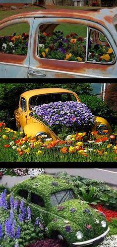 http://funflowerfacts.files.wordpress.com/2012/05/beetles.jpg?w=640