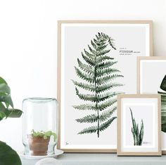 Plate 1 / Fern  Urban Botanic Watercolor painting printed on 250 g. fine art photo paper. Limited edition of 500. Signed by artist with handwritten numbering.
