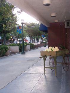 Montrose, California: Small Town Chic
