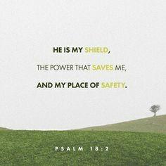 El Señor es mi roca , mi amparo, mi libertador; es mi Dios, el peñasco en que me refugio. Es mi escudo, el poder que me salva, ¡mi más alto escondite! Sal 18:2 NVI http://bible.com/128/psa.18.2.NVI