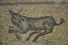 Basilica of Aquileia, Italy. www.mused-mosaik.de