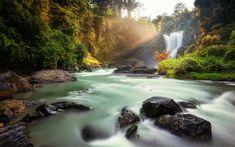 Download wallpapers Tegenungan Waterfall, morning, jungle, river, Indonesia