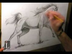 Learning to Draw: How to Draw a Horse - Fine Art-Tips. - YouTube