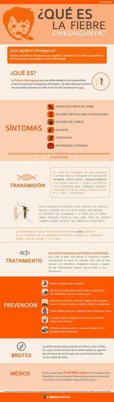 ¿Qué es la fiebre chikungunya? #infografia