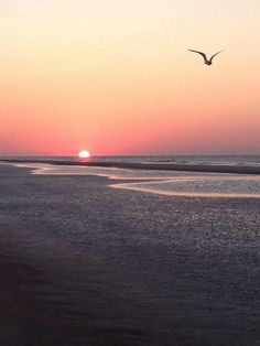 Hilton Head, SC beach at sunset. I loved it here!!!
