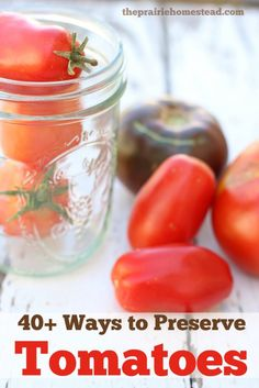 40+ Ways to Preserve Tomatoes