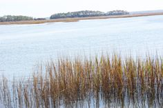 May River marshes and many other beautiful Water Home Tours: Simple Nature Decor