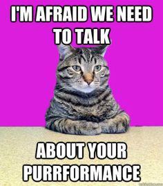 performance appraisal assignment essays