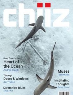 Chiiz Magazine - Get your Digital Subscription