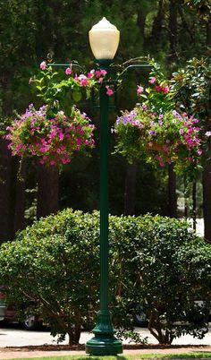 Flower Adorned Lamp Post In Pinehurst N.