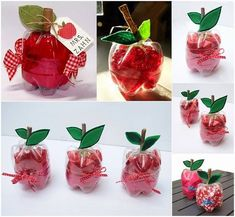 Plastic Bottles Into Cute Apple Gift For Teachers