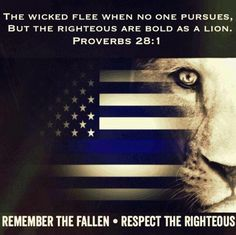 Thin Blue Line-Serve and Protect