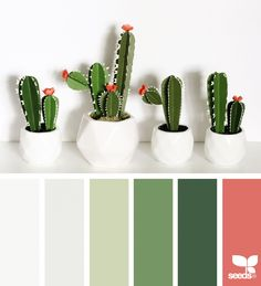 Paper Cacti | design seeds | Bloglovin'
