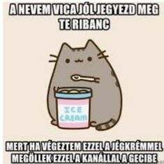 Pusheen Cat, Grumpy Cat, Funny Moments, Bff, Haha, Funny Pictures, Jokes, Wallpaper, Pictures
