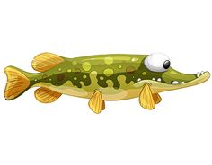 """Check out new work on my @Behance portfolio: """"Hungry nice pike"""" http://on.be.net/1EVqZgN"""