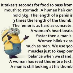 Best Funny Minions Quotes