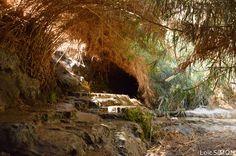 Ein Gedi Natural reserve - Israel