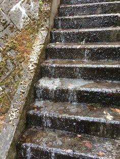 12月。すでに境内の階段は凍りつき。